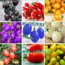 Big sale Bonsai Tomato seeds Mini Cherry Potted Sweet Fruit Vegetable seeds Organic Fresh 100 seeds/pack