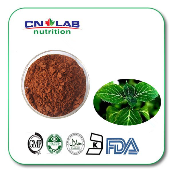 Kosher/Halal/ISO Low Price High Quality Epimedium Leaf Extract,epimedium extract ,Horny Goat Weed Extract Powder factory price kosher halal iso low price high quality epimedium leaf extract epimedium extract horny goat weed extract powder factory price