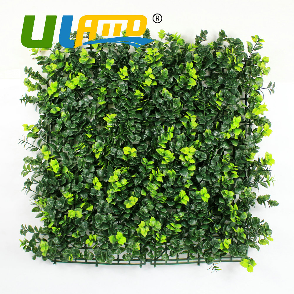 Online get cheap screening fence panels aliexpress alibaba uland artificial buxus hedges panels 50x50cmpc synthetic green plant leaves fence screening garden indoor outdoor decoration baanklon Choice Image