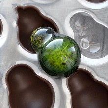 SHENHONG New Arrival Gourd Chocolate Mold Polycarbonate Cucurbit Mould 3D Candy BPA Free Baking Tools