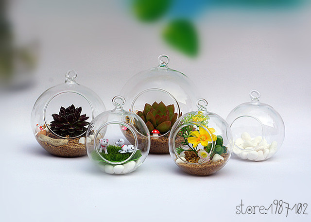 2018 1pc Ball Globe Shape Transparent Hanging Glass Vase Flower