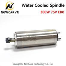 High Speed 300W Water Cooled Spindle Motor 75V ER8 Collet Milling Spindle Newcarve Spindle