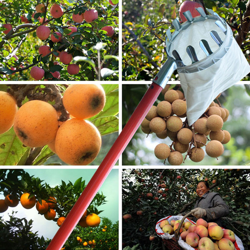 New High Quality Metal Garden Tools Fruit picker Convenient Horticultural Fruit Picker Gardening Apple Peach Picking Tools
