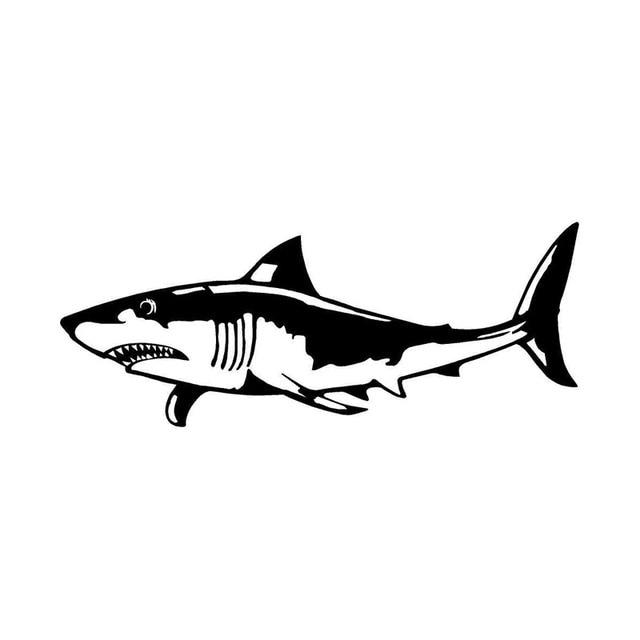 Kumpulan Koleksi Gambar Ikan Hiu Keren Terbaru