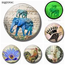 5PCS 25MM Cartoon Animals Fridge Magnet Glass Elephant Crow Sheep Chicken Removable Luminous Stickers for Refrigerator for Home(China)