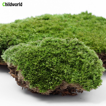 Micro Landscape Plant Moss Fresh Moss Natural Growth Mini Ecological Bottle Accessories Material micro landscape plant moss fresh moss natural growth mini ecological bottle accessories material