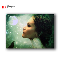 30 point fiber optic lights Led Canvas Printing fairy face with moon wall pictures panting wall art home decor Gift cheap price