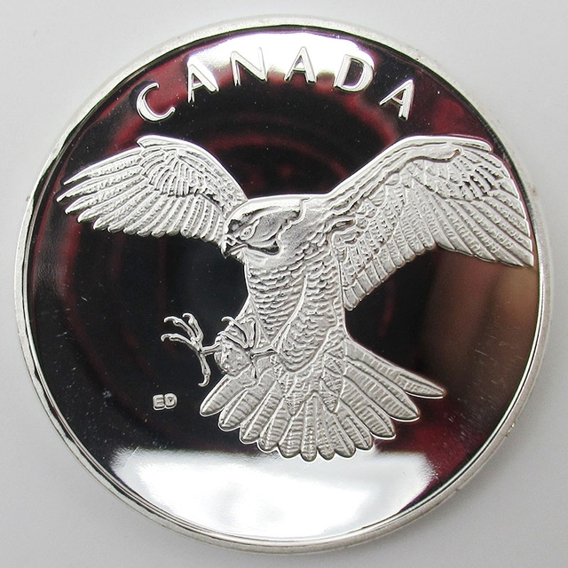 eagle in imcdb package the org medallion