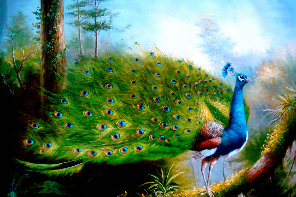 Home Wall Decor Canvas Print oil painting Abstract Art Feng Shui Peacock Picture