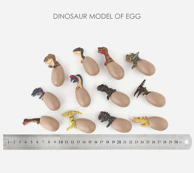 3D ביולוגיה התאסף דינוזאור ביצת סט מדע סימולציה דגם PVC חינוך למידה הקוגניטיבית אוסף צעצועי ילדים מתנה 12 pc