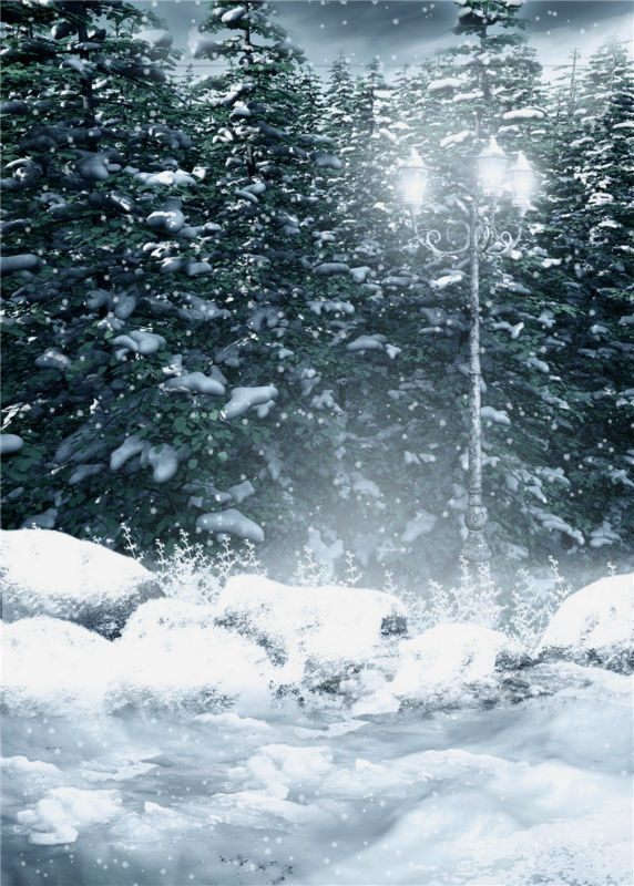 Snow Studio Props Trees Photography Background Vinyl Scenic Photo Backdrops 5x7ft or 3x5ft JieQX339