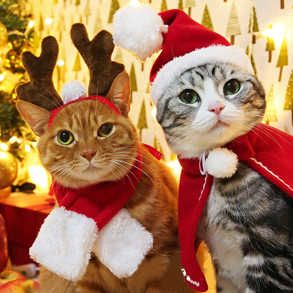 Funny Christmas Suit For Cats Hat & Scarfs Costume