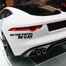 NO ONE KNOWS IM GAY Car Window Decal Vinyl Logo