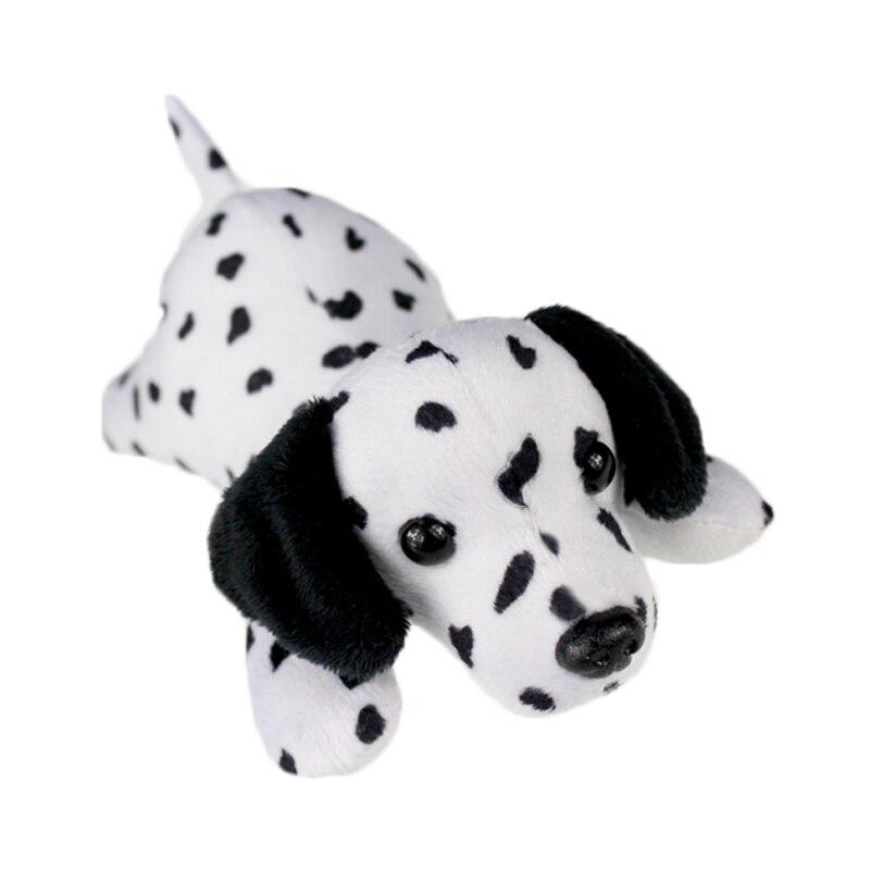 dalmatian dog_2
