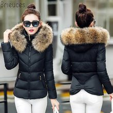Brieuces 2018 Winter Jacket Women Thick Warm Hooded Parka Padded Coat Long Paragraph Slim Female fur hooded warm