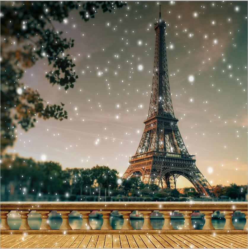 10x10ft Grey Spots Light Sky Eiffel Tower View River Paris