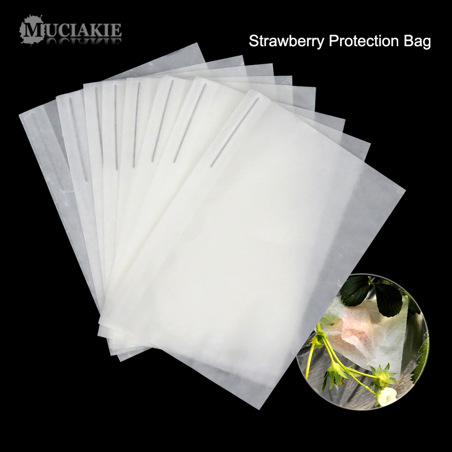 MUCIAKIE Strawberry Protection Grow Bags Cherry Nursery Fruit Cover Wax Paper Waterproof Anti Insert Provention Bags For Date