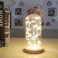 LED Solid Wood Night Light Tree Fire Silver Flower Star Lights USB Powered Dustproof Glass Cover