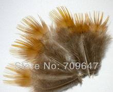 Free shipping! Hot sale! 200Pcs/Lot  Yellow/Red Lady Amherst Pheasant Body Plumage Feather