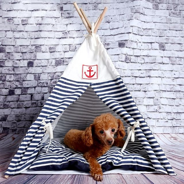 「tent sleeping dog」の画像検索結果