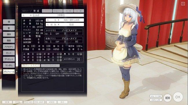 3d定制女仆整合版