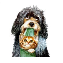 DIY diamond painting animal dog cat full round dimaond embroidery care mosaic bit cross stitch wall deco