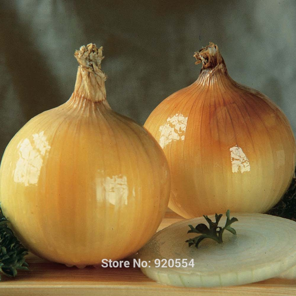 Image result for golden onions