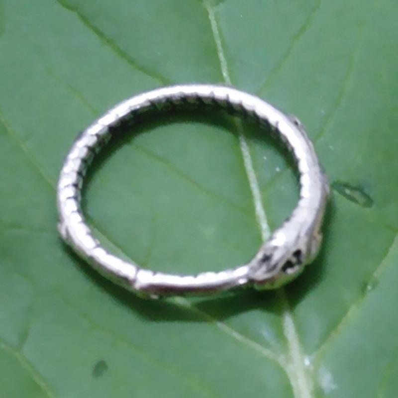 Drop shipping Retail Ouroboros prsten Šarmantni drevni srebrni - Modni nakit - Foto 3
