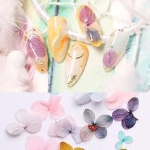 1Bag Dried Flowers 3D Nail Stickers Dry Hydrangea Summer Flower Beauty Sticker Art Decoration Design