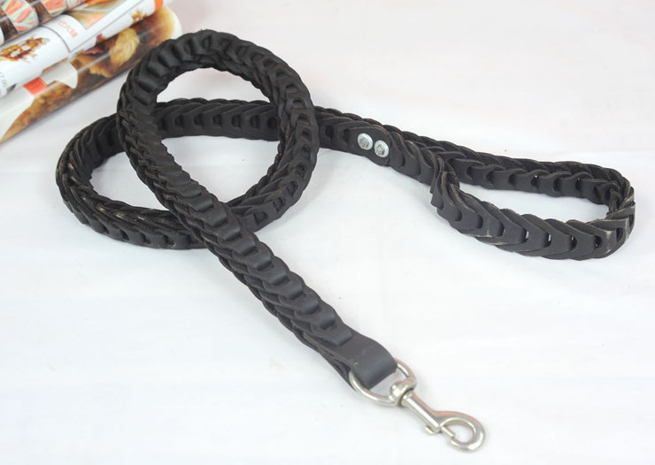 large dog leash (11)