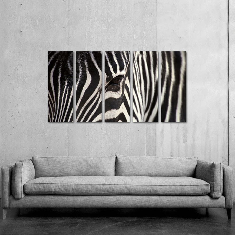 Unframed HD Print 5 Canvas Art Painting Zebra Living Room Decoration Spray Painting Mural Unframed Free Shipping