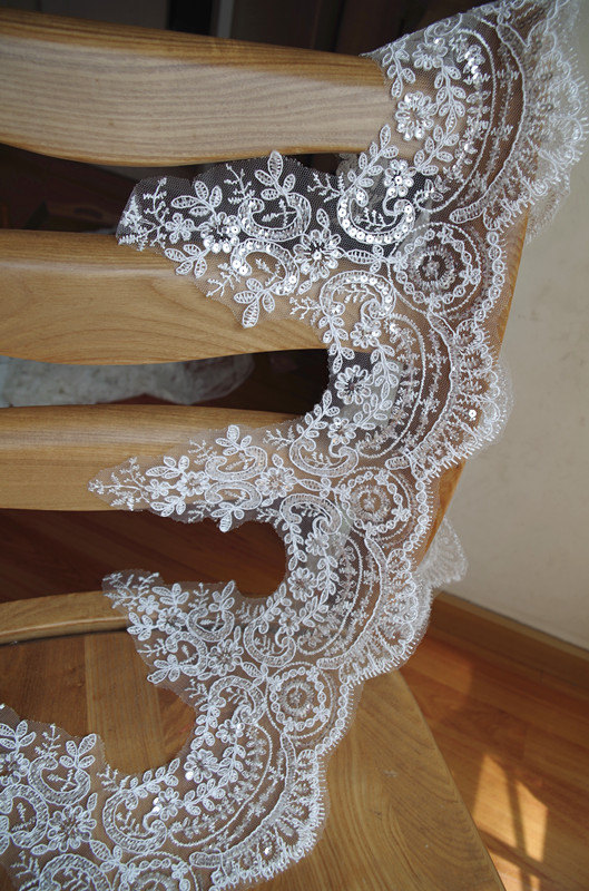 sequined lace trim, ivory cord lace trim, bridal lace border, 1 yard, LT CG106B