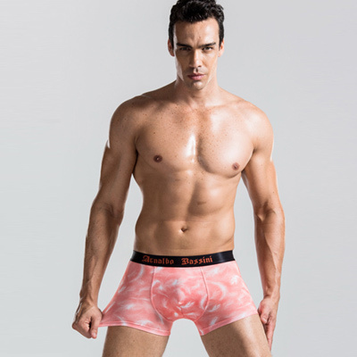 Mens Comfort Underwear Shorts Briefs Low Rise Hot Fashion