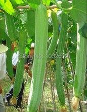 Китайские семена овощных культур полотенце тыквы семена 35 шт./упак. Luffa Cylindrica тыква губка люфы семена овощи для дома сад