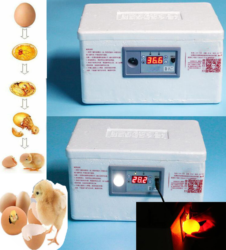 22 Position Automatic Digital Family Eggs Incubator Chicken Poultry Hatcher Home Foam Waterbed Incubator Farm Incubation Tools