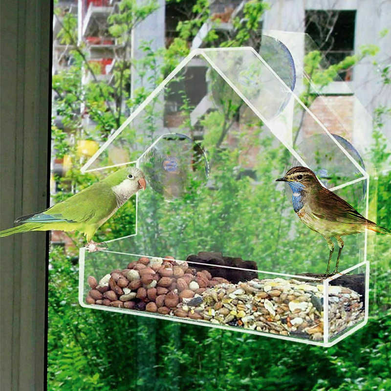 New Clear Glass Window Viewing Bird Feeder Hotel Table Seed Peanut Hanging Suction Alimentador Adsorption House Type Bird Feeder Bird Feeding Aliexpress