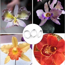 4YANG 3pcs/set Butterfly Orchid Flower Cookie Cutter Mold 3D Sugarcraft Pastry Biscuit Fondant Cake Baking DIY Decor