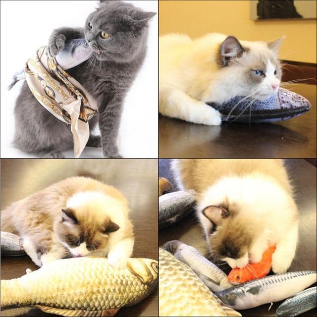 Cat Favor Fish Dog Toys 2