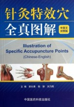 Illustration of Specific Acupuncture Points (Chinese-English). learning Traditional Chinese Medicine for  students or doctors  chinese painting english and chinese chinese authentic book for learning chinese culture and traditional painting