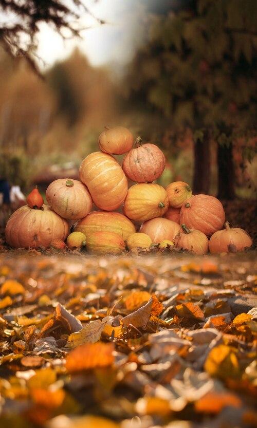 HUAYI Halloween Photography Backdrop pumpkin Backdrop landscape ...