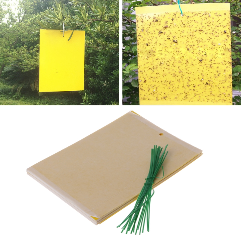 Convenient 20Pcs Dual-Sided Yellow Sticky Traps for Flying Plant Insect Gardening Tools