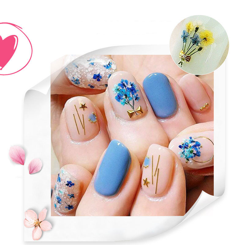 brand che gel Nail stickers adornment Japanese Dried flowers ...