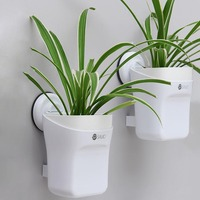 Brief Creative Wall Planter Plastic Hydroponic Succulents Plant Pot Home Hanging Planters Wall Vase Garden Decoration Flower Pot
