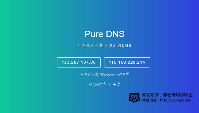 Pure DNS