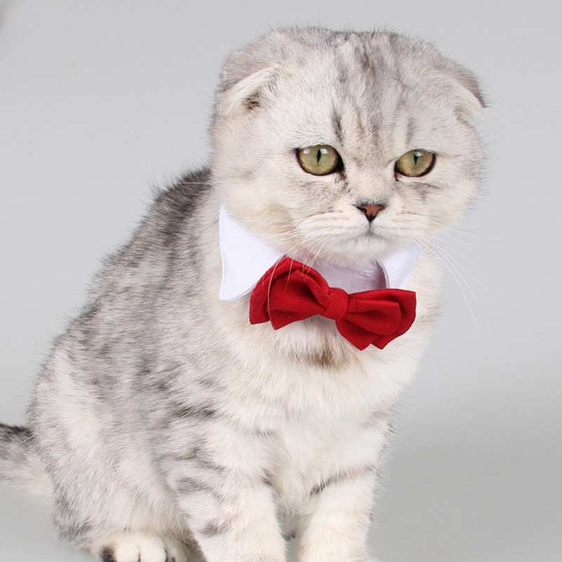 Cheap, Cute Red Colors Cats & Dogs Tie for Wedding, Christmas