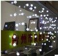 3.5 m RGB Cortina Decoración de La Boda del Copo de nieve LED de Vacaciones Luces de la Secuencia de la Tira 100 SMD 16 Edelweiss de Piel Bola de Iluminación LED