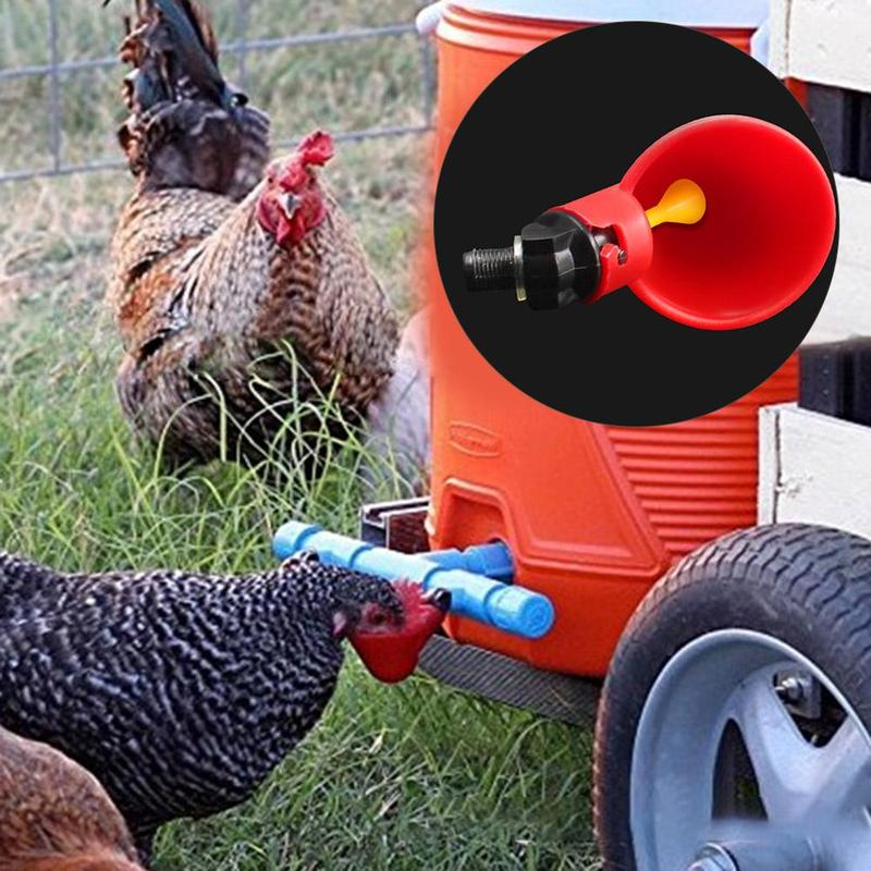 1Pcs Poultry Water Drinking Cups Automatic Quail Chicken Drinking Plastic Chicken Fowl Drinker Cups Breeding Equipment
