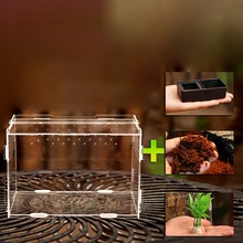 Terrarium Vivarium Kit With Magnet Latch Water Bowl Substrate Artificial Plant For Gecko Lizard Snake Tarantula Reptile Acrylic