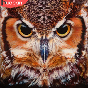 HUACAN Owl Diamond Painting Cross Stitch Animals Patterns Rhinestone Diamond Embroidery Full Square Diamond Mosaic Needlework