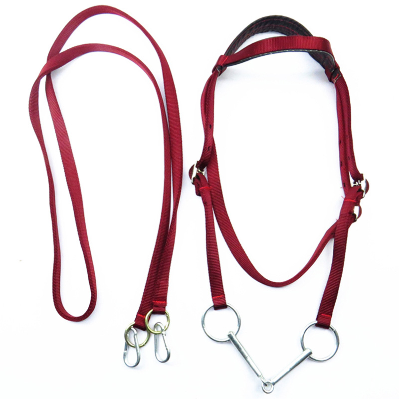Купить с кэшбэком Durable Horse Head Collar Adjustable PVC Horse Bridle With Rein Red Webbing Horse Halter Horse Racing Equipment